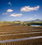 Rolling cultivated land Royalty Free Stock Photos