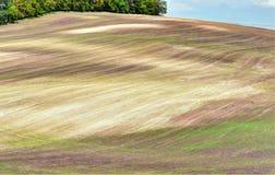 Rolling de zomerlandschap van Moravië Royalty-vrije Stock Foto's