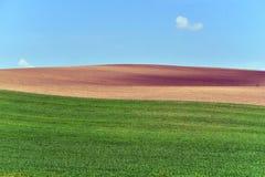 Rolling de zomerlandschap van Moravië Stock Afbeelding
