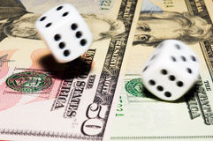 Rolling dice. With move effect on dollars Stock Image
