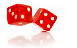 Rolling dice. Two red dice isolated on white stock image