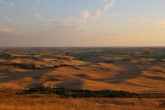 Rolling die Heuvels van Palouse van Steptoe-Butte wordt gezien royalty-vrije stock foto's