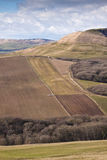 Rolling Dorset countryside with patchwork fields Royalty Free Stock Photography