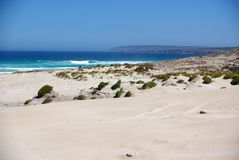 Rolling Dunes & Blue Ocean, Eyre Peninsula. Rolling sand dunes giving way to rocky cliffs, at the entrance to the Port Lincoln National Park, Eyre Peninsula Royalty Free Stock Image