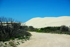 Rolling Dunes & Dirt Track, Eyre Peninsula Royalty Free Stock Photo
