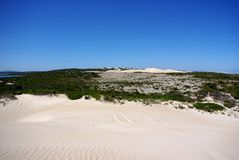 Rolling Dunes & Sandy Tracks, Eyre Peninsula. Rolling sand dunes as far as the eye can see, at the entrance to the Port Lincoln National Park, Eyre Peninsula Stock Photo