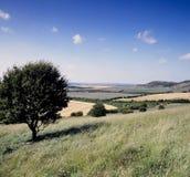 Rolling Engels platteland Royalty-vrije Stock Afbeeldingen