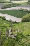 Rolling Engels plattelandslandschap in de Lente Royalty-vrije Stock Foto