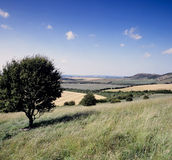 Rolling english countryside Royalty Free Stock Images