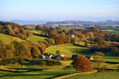 Rolling English countryside in Autumn. Typical English rural scene with rolling countryside and grazing sheep with Autumn colours Stock Images