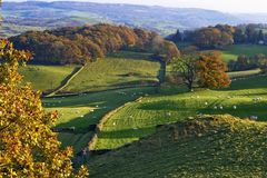 Rolling English countryside in Autumn Royalty Free Stock Photography