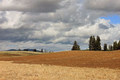 Rolling Farms Fields on a Stormy Day Stock Image