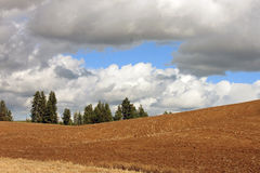 Rolling Farms Fields on a Stormy Day Royalty Free Stock Photography