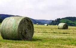 Rolling field stacks Royalty Free Stock Image