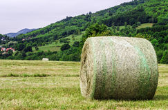 Rolling field stacks Stock Images