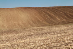 Rolling fields Stock Photography