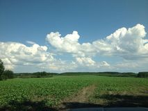 Rolling fields Royalty Free Stock Photography