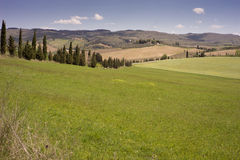 Rolling Fields, Chianti Royalty Free Stock Photography