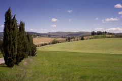 Rolling Fields, Chianti Stock Photography