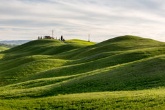 Rolling fields - Tuscany Royalty Free Stock Photo