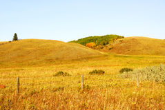 Rolling grassland royalty free stock photos