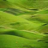 Rolling green hills background. Rolling green hills in spring or summer nature background Royalty Free Stock Image
