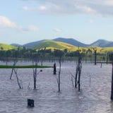 Rolling green hills. Behind lake Somerset Northwest of Brisbane, Queensland, Australia Royalty Free Stock Photography