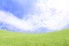 Rolling green hills and a blue sky. Stock Images