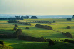 Rolling green hills of Camperdown view from top of Black Hill lookout at sunset Stock Image