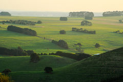 Rolling green hills of Camperdown view from top of Black Hill lookout at sunset Stock Photography