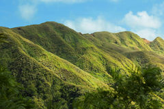 Rolling Green Hills. A picture of rolling green hills in Guam Stock Photography