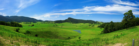 Rolling Green Meadow Royalty Free Stock Image