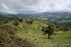 Rolling groene heuvels in platteland stock foto's