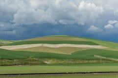 Rolling groene landbouwbedrijfgebieden met boos onweer Royalty-vrije Stock Foto's