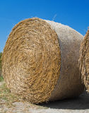 Rolling Haystack. Stock Images