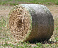 Rolling haystack. Royalty Free Stock Photo