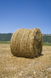 Rolling haystack. Royalty Free Stock Photos