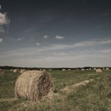 Rolling haystack Royalty Free Stock Photo