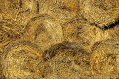 Rolling Haystack Stock Images