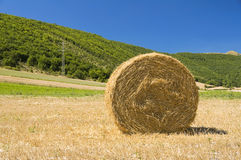 Rolling haystack in countryside. Stock Photo
