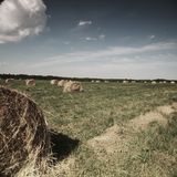 Rolling haystack on summer field Royalty Free Stock Photo