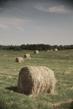 Rolling haystack Royalty Free Stock Photos
