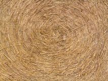 Rolling Haystack texture Royalty Free Stock Images