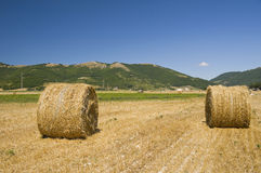Rolling haystacks in countryside. Stock Photos