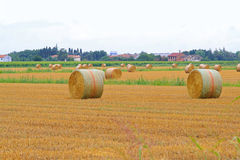 Rolling haystacks Royalty Free Stock Photo