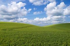 Rolling heuvellandschap Stock Foto