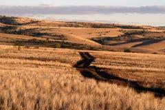 Rolling heuvels Royalty-vrije Stock Afbeeldingen