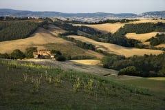 Rolling heuvels en platteland in Toscanië. royalty-vrije stock foto's