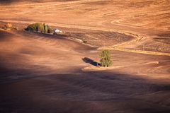 Autumn fields royalty free stock photography