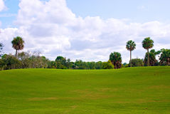 Rolling hill of golf course green. A beautiful rolling green hill of grass on florida golf course with trees and cloud filled sky. With plenty of copy space in Royalty Free Stock Photos